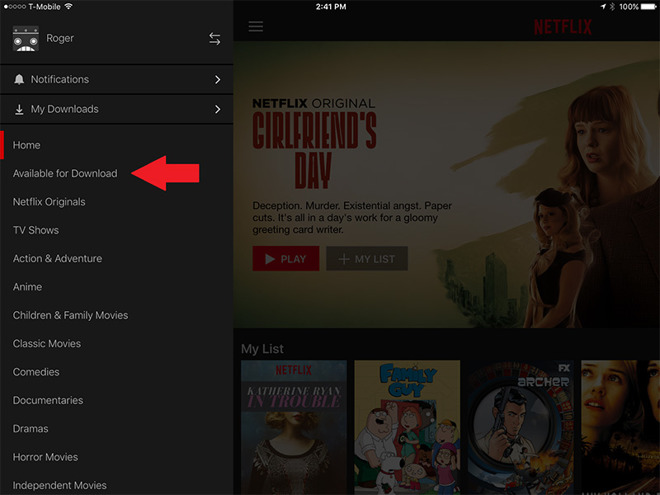 saving netflix movies to ipad
